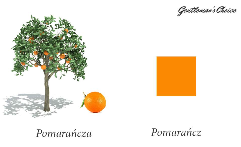 pomarańcza to owoc, pomarańcz to kolor