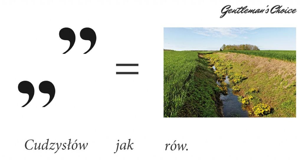 słowo cudzysłów odmienia się jak rów