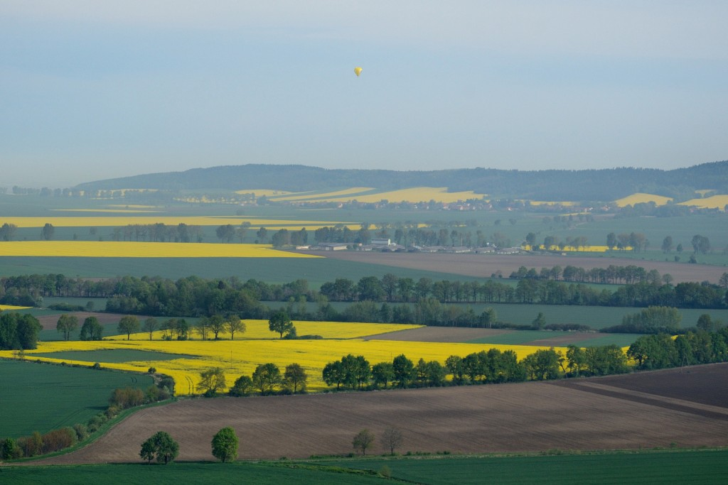 Pola rzepaku, Wzgórza Kiełczyńskie, żółty balon.
