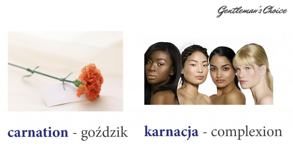 carnation = goździk, karnacja = complexion
