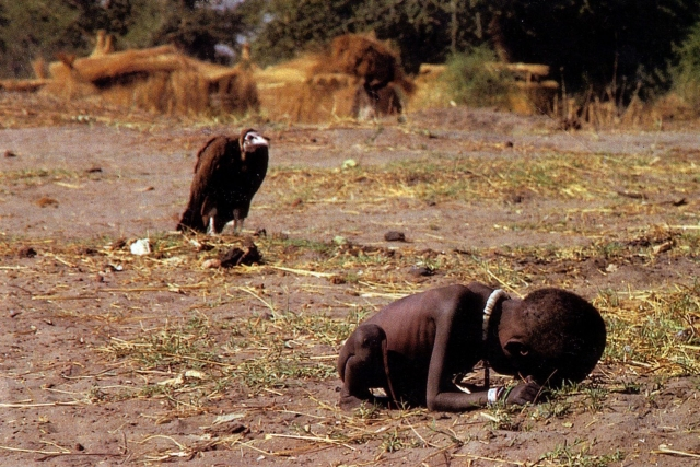 sęp i głodujące dziecko