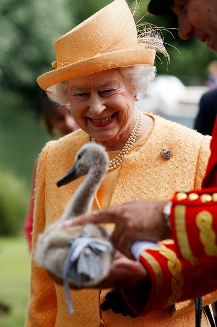 Królowa Elżbieta II w pomarańczowym kostiumie i kapeluszu