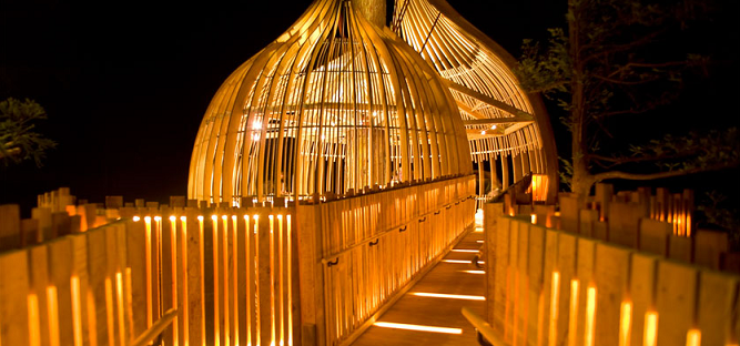 treehouse-restaurant-nz_arhitektura-1
