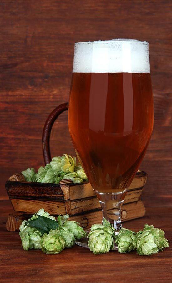 piwo i szyszki chmielu